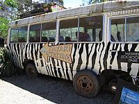 A Trip to Werribee Zoo