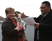 2013 Pet Blessing Service