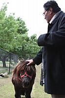 Blessing of the pony